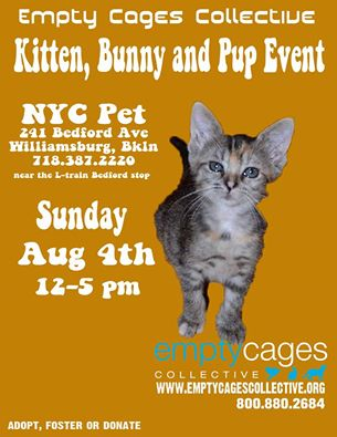 NYC Pet Empty Cages Adoption